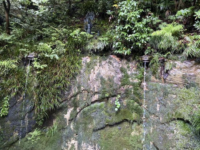 緑雨散歩_e0277800_17294427.jpg