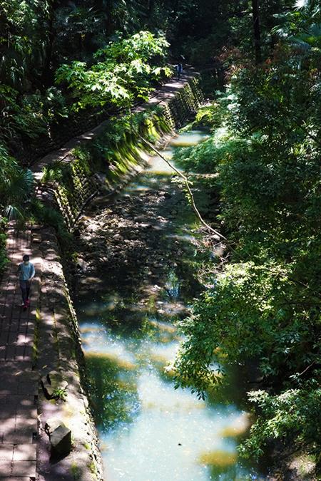 緑雨散歩_e0277800_17312123.jpg