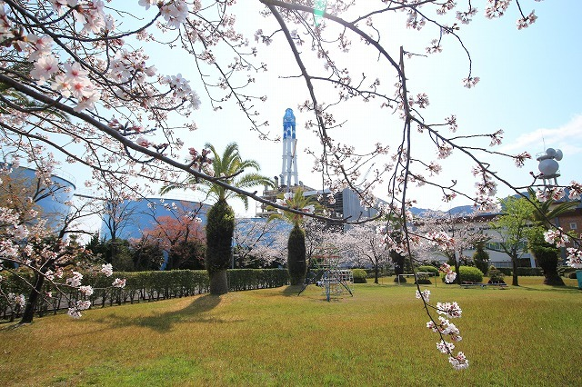 桜咲く尾鷲三田工事所 庭園散歩(その2)(撮影:4月10日)_e0321325_16543654.jpg