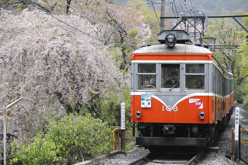 バリ島・京都・鉄道・海(改訂版=訓戒処分)_e0367330_14001835.jpg