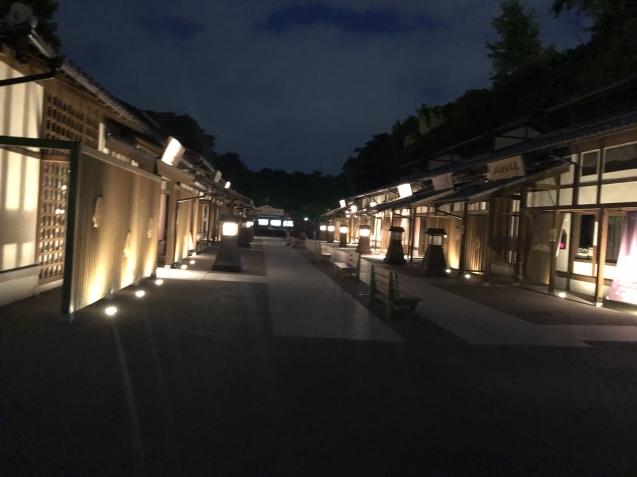 夜の名古屋城へ〜_e0379544_10202915.jpeg