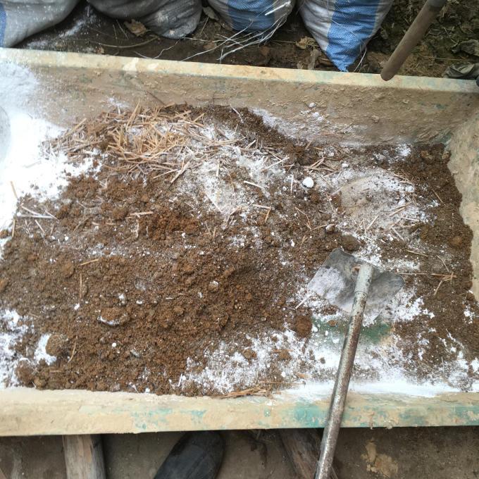 石の次は土仕事です♪さて何ができる?_f0182246_21184961.jpg