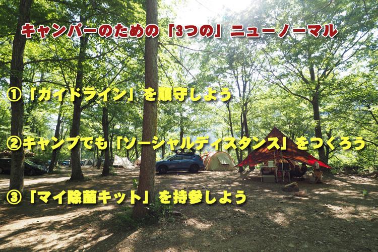 【ウィズコロナにおける】キャンパーのための「3つの」ニューノーマル_b0008655_14121371.jpg
