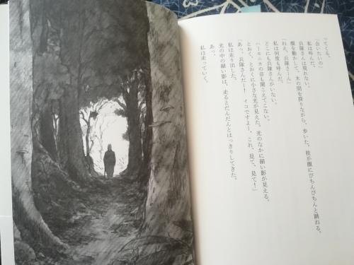 トンネルの森_a0111166_06401153.jpg