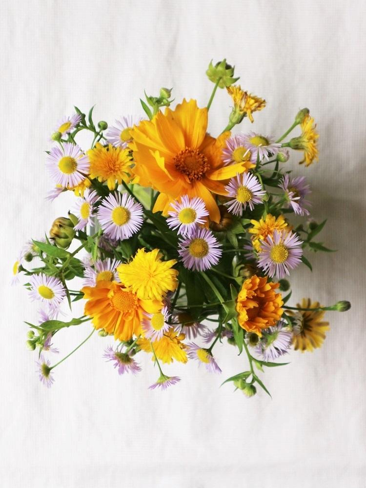野の花あそび_d0159066_15265429.jpg