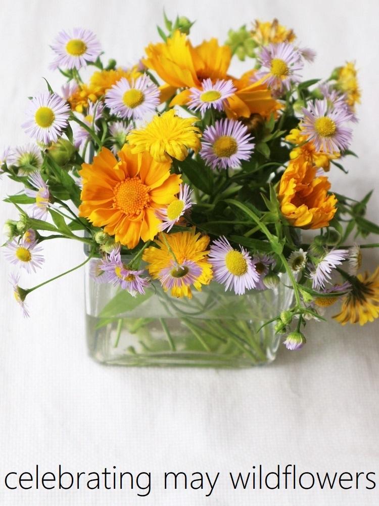 野の花あそび_d0159066_15270294.jpg
