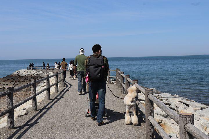 砂利の海岸で♪【誕生日旅行3】_b0111376_15243310.jpg