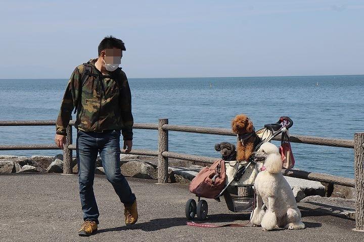 砂利の海岸で♪【誕生日旅行3】_b0111376_15290702.jpg