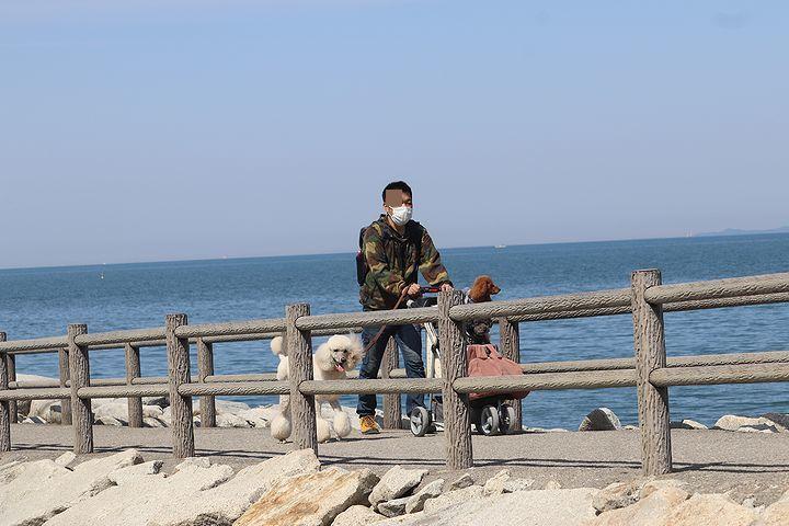 砂利の海岸で♪【誕生日旅行3】_b0111376_15333064.jpg