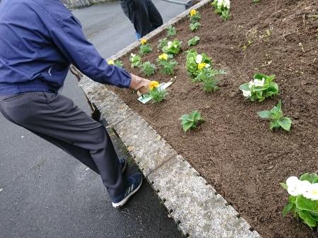 花いっぱい運動2020_e0150787_13125918.jpg