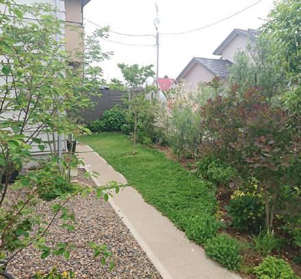 中庭・緑豊かなアプローチの様子_b0183404_12225217.jpg
