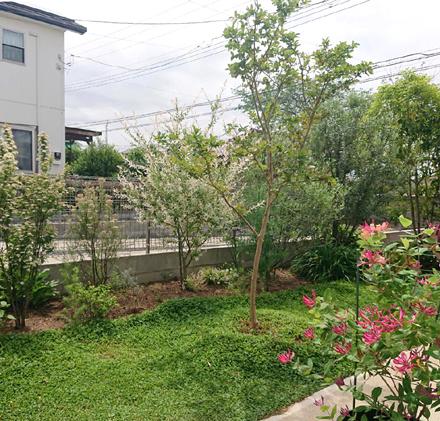 中庭・緑豊かなアプローチの様子_b0183404_12375691.jpg