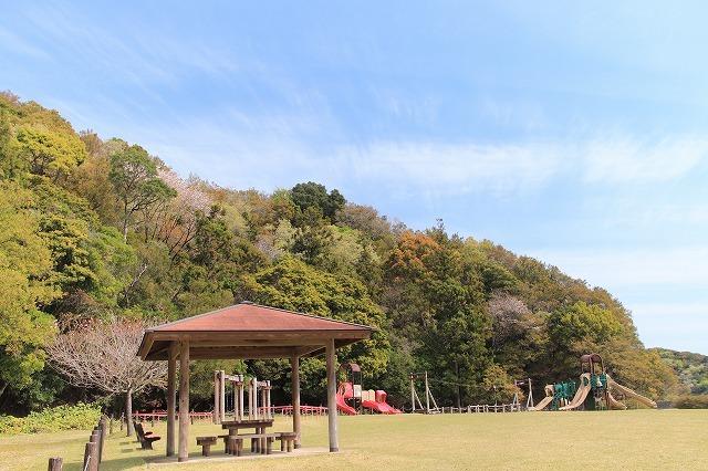 大白公園一周散歩(その1)(撮影:4月11日)_e0321325_19244643.jpg