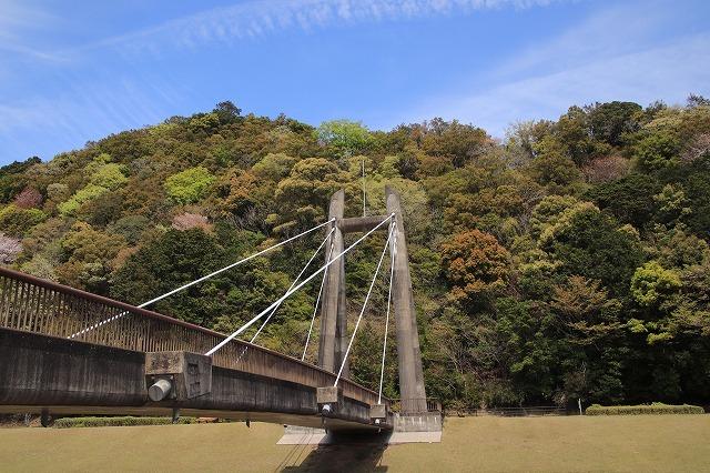 大白公園一周散歩(その2)(撮影:4月11日)_e0321325_19451782.jpg