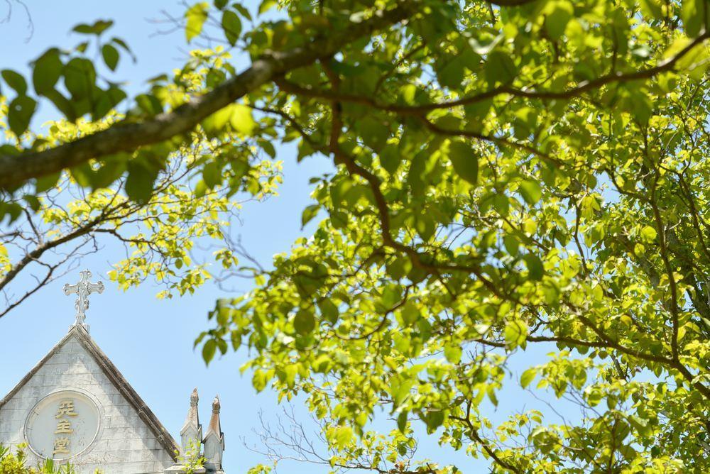 聖ザビエル天主堂と新緑_e0373930_21495069.jpg