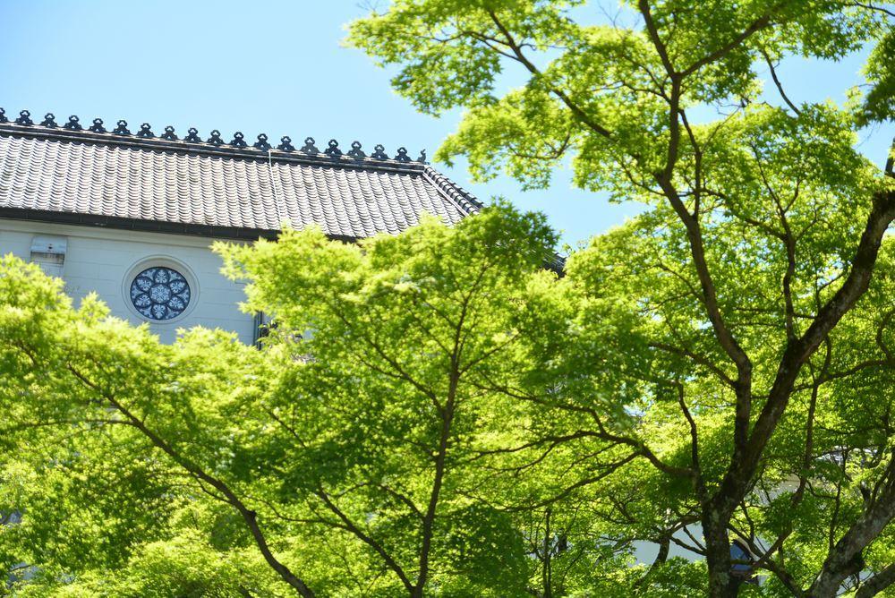 聖ザビエル天主堂と新緑_e0373930_21495087.jpg