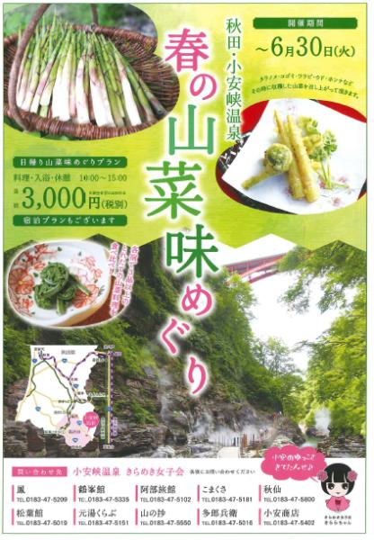 春の山菜味めぐり ~日帰りプラン~_c0176838_16380810.png