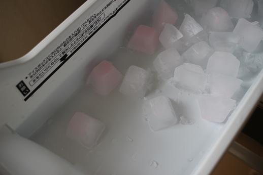 自動製氷機の洗浄をする。_d0291758_21542080.jpg