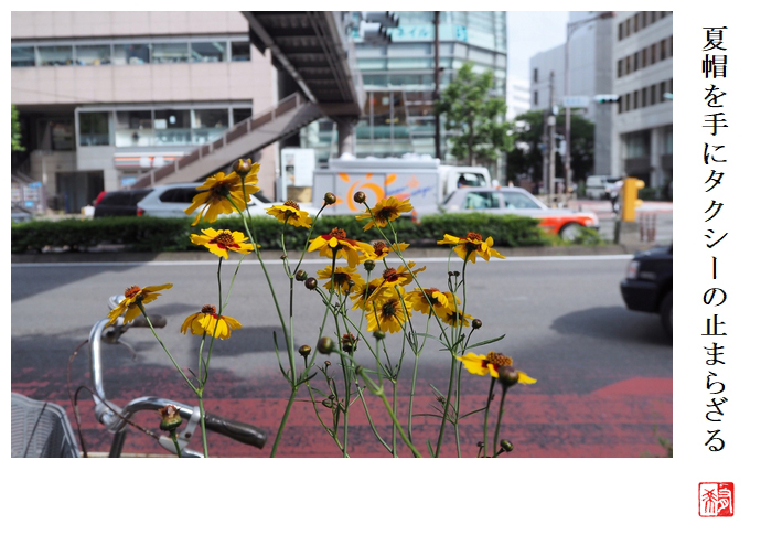 夏帽を手にタクシーの止まらざる_a0248481_21390783.jpg
