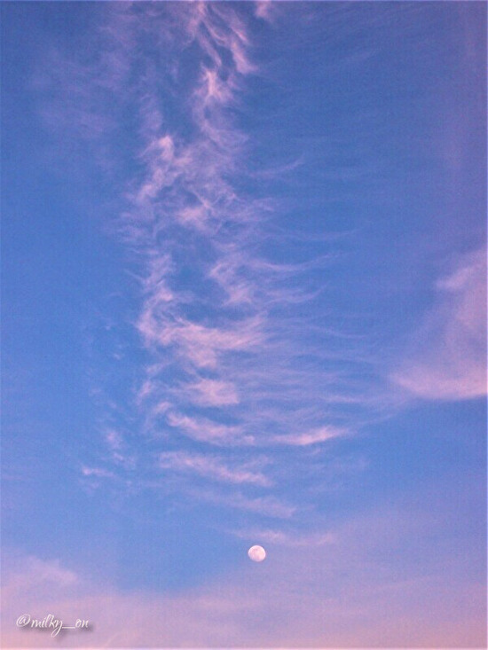 月と太陽_d0177586_15284628.jpg