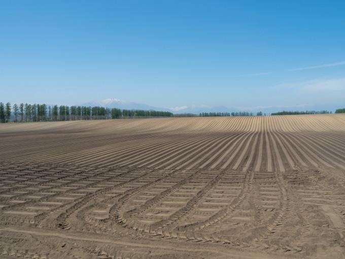 5月下旬は新緑の季節・・畑の畝模様が風景のアクセントに!_f0276498_18065496.jpg
