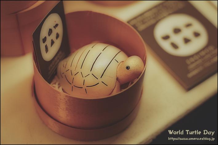 亀が好きなら避けられない_f0100215_22065974.jpg