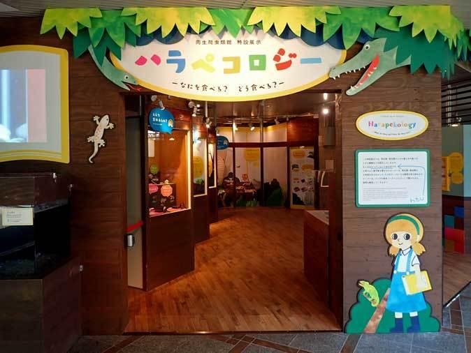 上野動物園: 両生爬虫類館特設展示 「ハラペコロジー~なにを食べる? どう食べる?」【前編】_b0355317_13563833.jpg