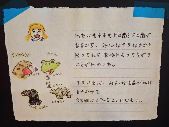 上野動物園: 両生爬虫類館特設展示 「ハラペコロジー~なにを食べる? どう食べる?」【後編】_b0355317_22015996.jpg