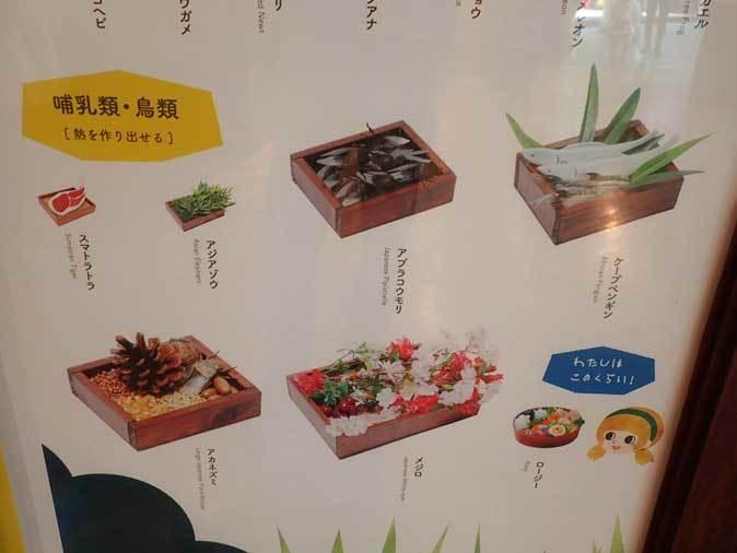 上野動物園: 両生爬虫類館特設展示 「ハラペコロジー~なにを食べる? どう食べる?」【後編】_b0355317_22233815.jpg