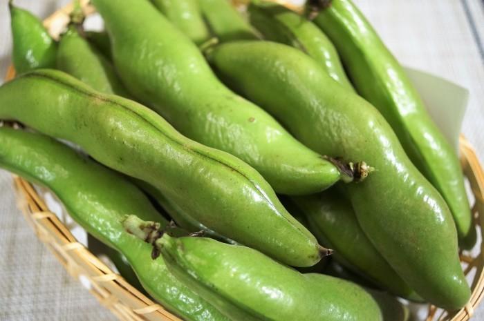 ■菜園料理【採り立て空豆のレモン塩バター焼き】_b0033423_20551630.jpg