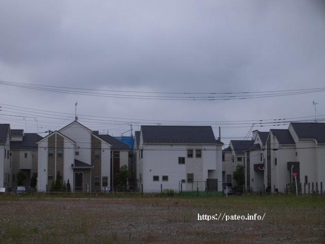 足立区北部地域の県境東伊興の寺町を歩く。_a0214329_16174128.jpg
