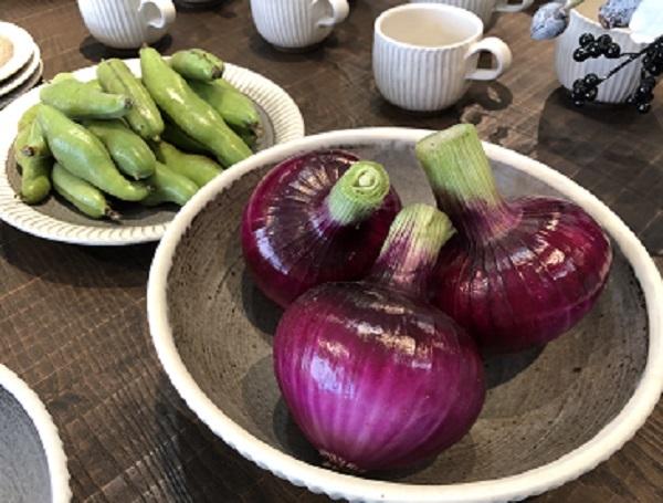 採りたて野菜を器に_b0100229_13115470.jpg