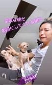 「GACKTと家呑み!!用」の酒を買いに・・・_c0036138_16560242.jpg
