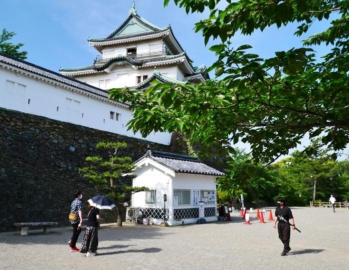 和歌山城天守閣 再開  2020-05-24 00:00     _b0093754_21230873.jpg