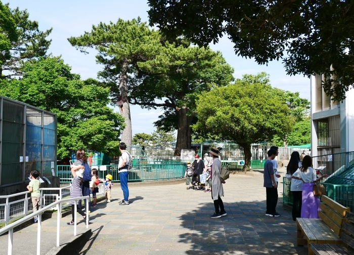 お城の動物園も再開  2020-05-26 00:00     _b0093754_22271020.jpg
