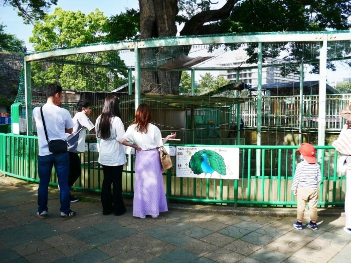 お城の動物園も再開  2020-05-26 00:00     _b0093754_22273220.jpg
