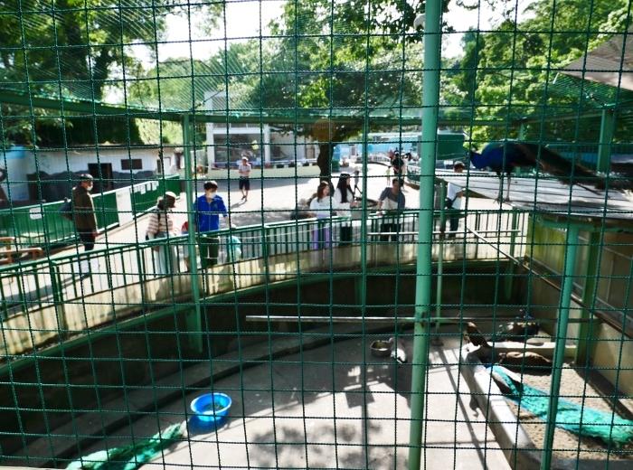 お城の動物園も再開  2020-05-26 00:00     _b0093754_22274467.jpg