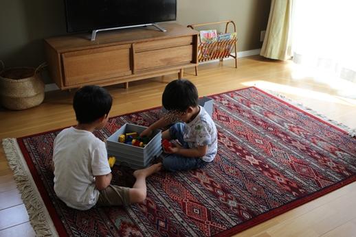 我が家のレゴ収納_d0291758_2247999.jpg