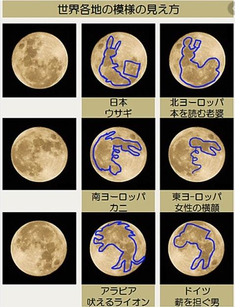 今日はアリさんと「お月さん」を勉強します : あけっぴろげてあらいざらいのあるがまま