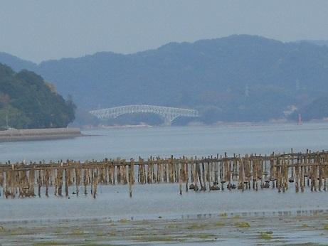 三津口湾の大干潟、向こうに見えるのは…_e0175370_20510249.jpg