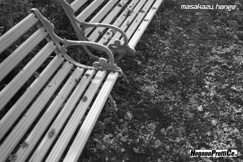 【おっ散歩カメラ放浪記:第6回】青葉神社とカラスコ_b0008475_08150145.jpg