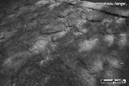 【おっ散歩カメラ放浪記:第6回】青葉神社とカラスコ_b0008475_08150601.jpg
