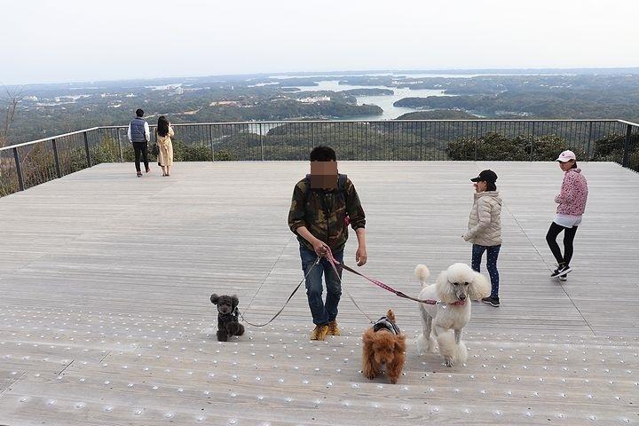 横山展望台の絶景を再び。【誕生日旅行5】_b0111376_15264812.jpg