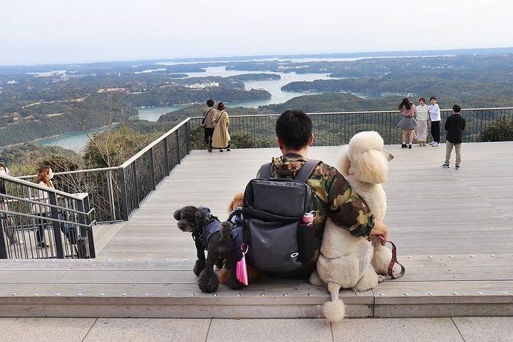 横山展望台の絶景を再び。【誕生日旅行5】_b0111376_15291497.jpg