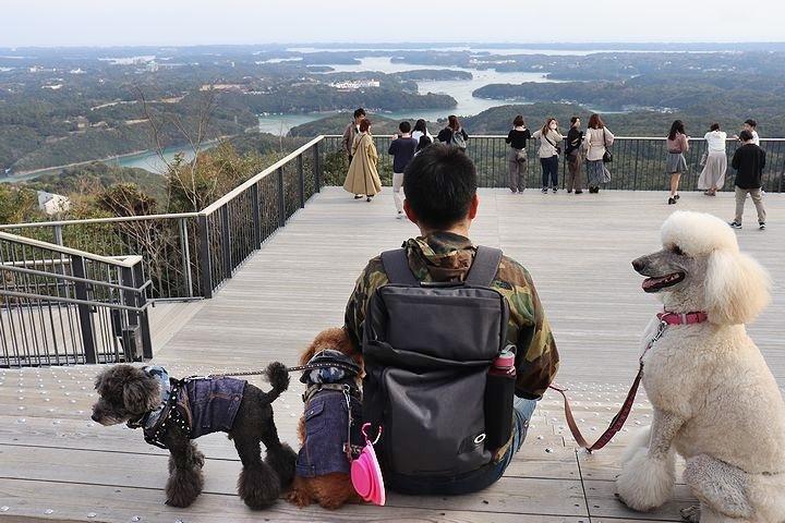 横山展望台の絶景を再び。【誕生日旅行5】_b0111376_15330064.jpg