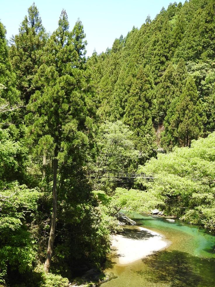 『渓流風景(神崎川と円原川)』_d0054276_20171015.jpg