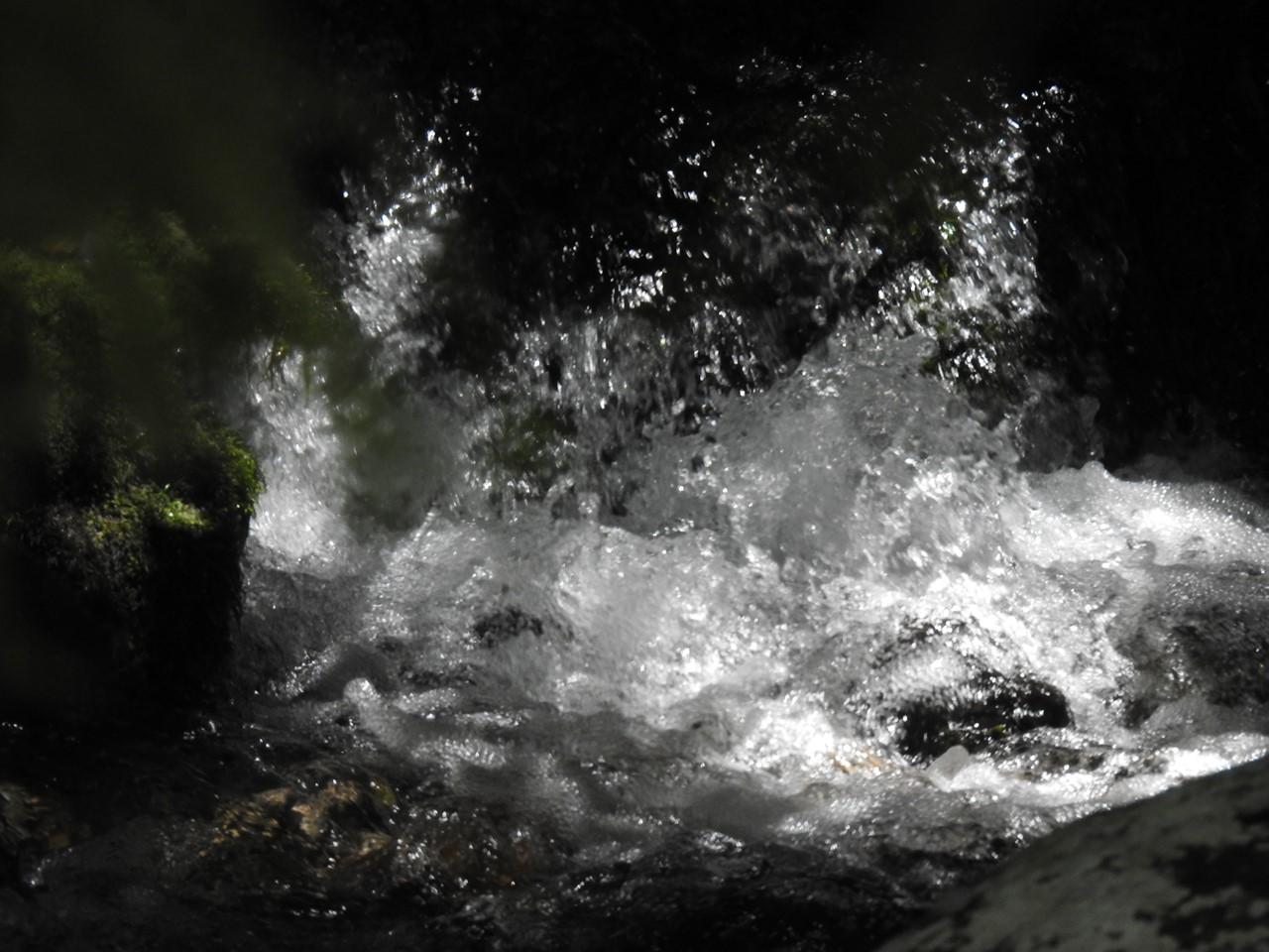 『渓流風景(神崎川と円原川)』_d0054276_20193262.jpg