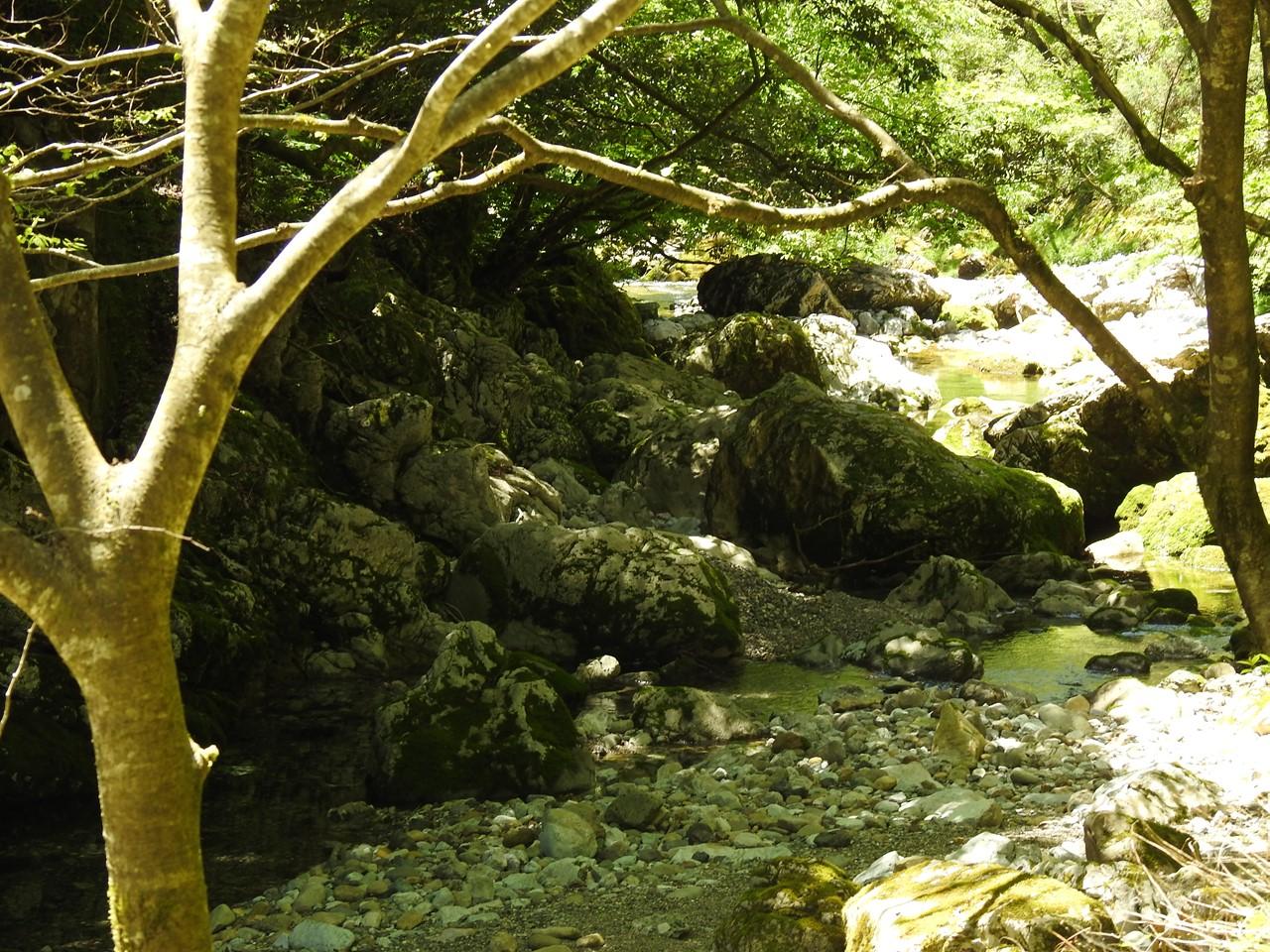 『渓流風景(神崎川と円原川)』_d0054276_20205744.jpg