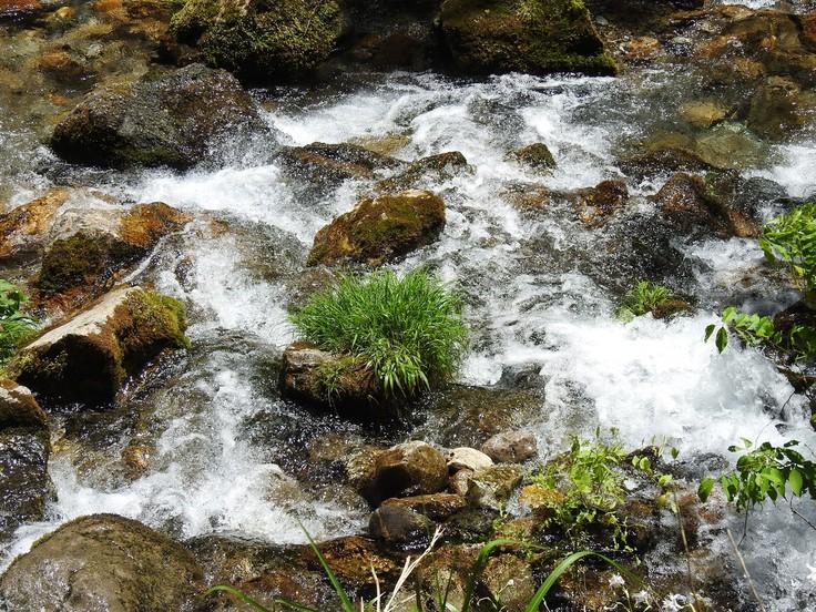 『渓流風景(神崎川と円原川)』_d0054276_20211282.jpg