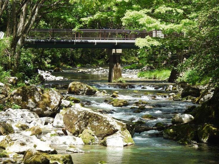 『渓流風景(神崎川と円原川)』_d0054276_20221897.jpg
